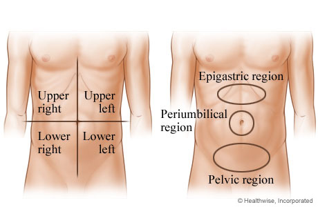 Picture of abdominal areas where pain may occur
