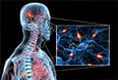 Multiple Sclerosis: Causes, Symptoms and Treatment