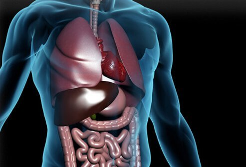 Indigestion Treatment, Symptoms, Causes, Home Remedy Relief, Heartburn