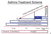 This graph shows asthma consensus guidelines used to manage chronic asthma. These guidelines are also generally used to treat pregnant patients with asthma.