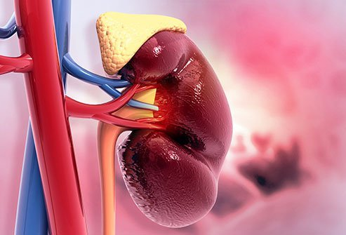 Addison's disease cannot be cured, but replacement hormones can treat the adrenal failure symptoms.