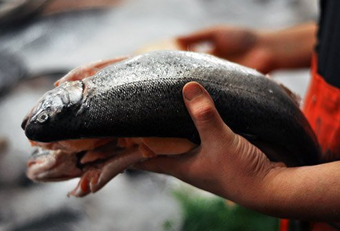Fish-handler's disease is caused when cuts or scrapes become infected when handling fish.