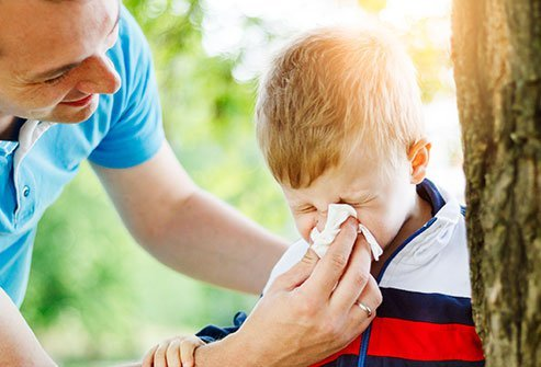 Hay fever symptoms can include rash or stuffy nose.