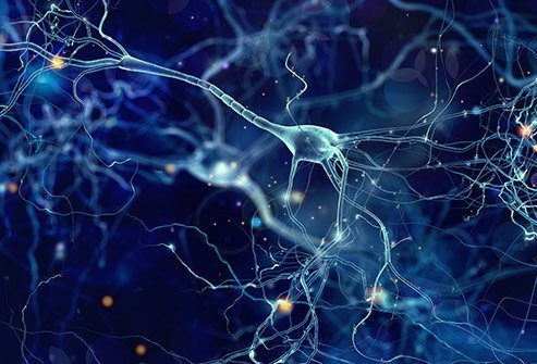 Picture of nerve conduction of the brain.