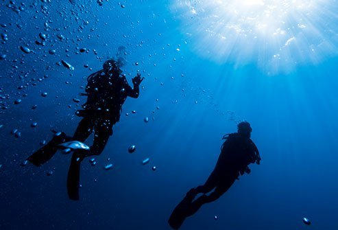 The bends, or decompression sickness, occurs when nitrogen bubbles expand in the bloodstream and tissues when a scuba diver surfaces too fast.