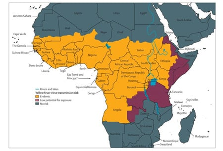 Figure 1: Areas with Risk of Yellow Fever Virus Transmission in Africa.