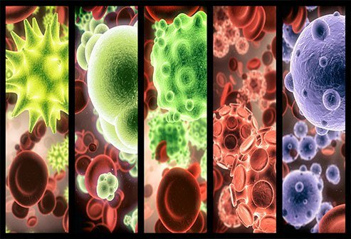 Bacteria can help or harm your body depending on what kind.