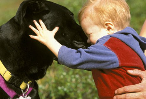 A toddler hugging a dog