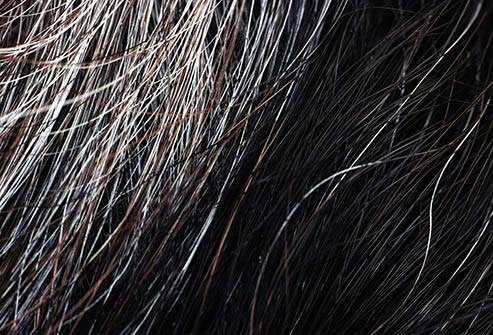 Hair that is silver or gray feels coarse compared to hair that is a natural color.