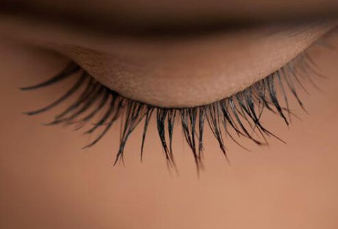 Photo of eyelash.