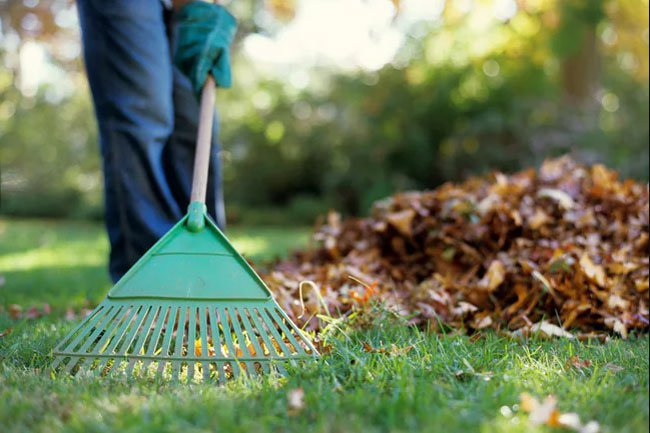 Raking your lawn and bagging the leaves is a great way to get exercise.