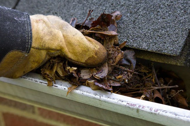 Cleaning your gutters can burn some calories, but be safe and careful.