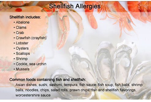 People who have shellfish allergies must avoid all types of shellfish.