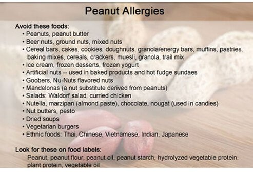 Peanuts are a common food allergen, and people with peanut allergies can have severe reactions, which is why they are often banned from classrooms.