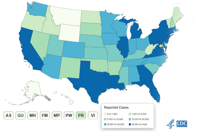 Record-High Numbers of New COVID-19 Cases Seen in 14 States, Puerto Rico
