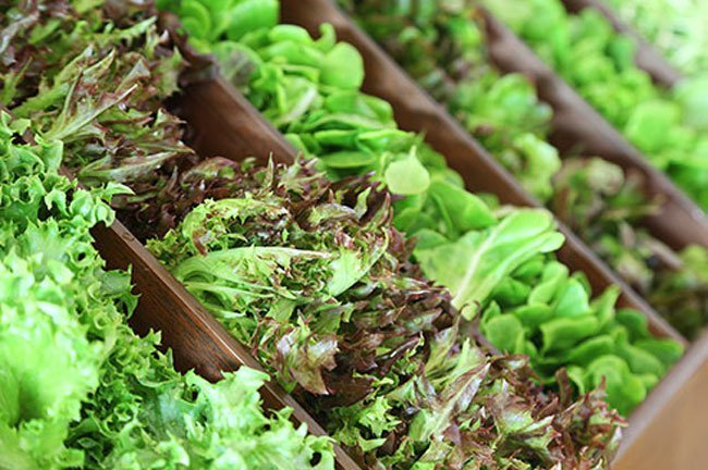 Vitamin K in leafy greens may interfere with blood thinning medications.