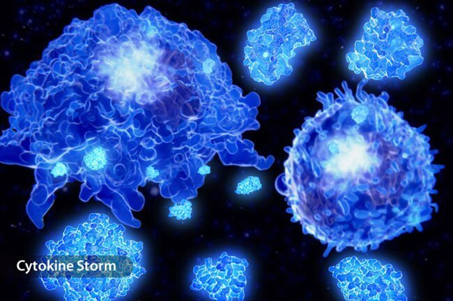 Many doctors think an overblown immune response causes many of the more serious consequences of COVID-19.