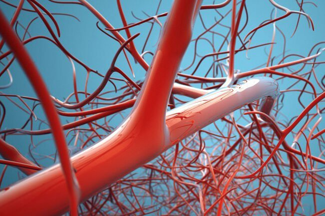 COVID-19 seems to be able to attack cells that line your blood vessels.