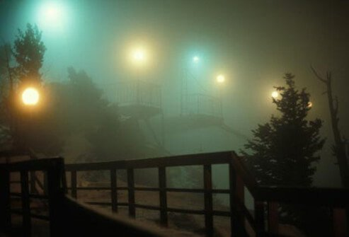 A park on a foggy night.