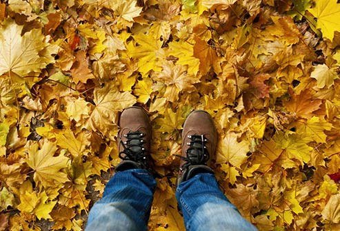 Uncut fields and piles of damp leaves are prime places for mold.