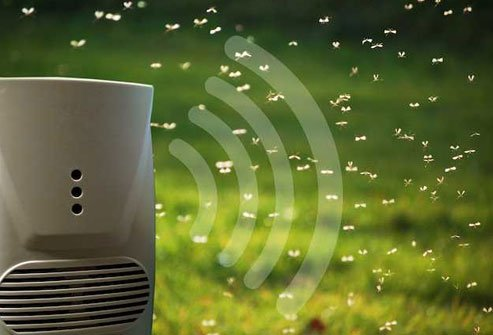 These gadgets send out high-frequency sound that's meant to drive away pests.