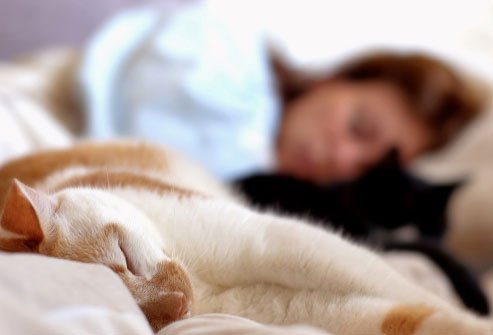 The right amount of shut-eye helps keep your blood sugar at healthy levels.