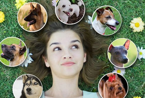 Woman Surrounded By Dog Faces.