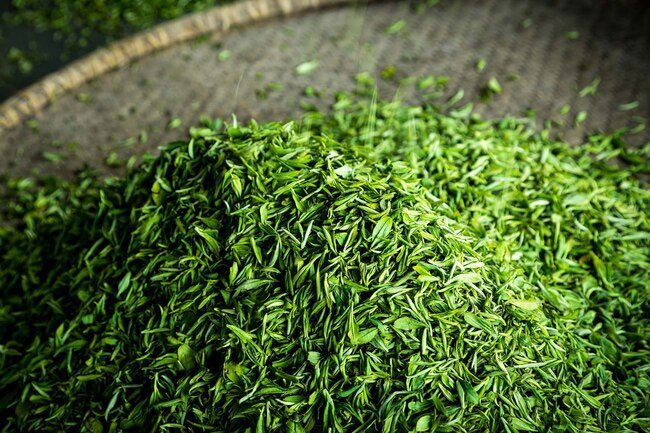 To trim belly fat, be smart about your diet, instead of soda, consider green tea..