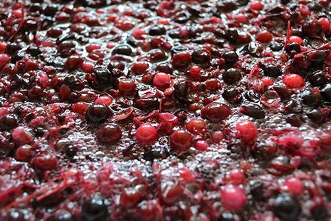 Wine is made by a process called fermentation. Yeast eats the sugar in grapes and leaves alcohol and carbon dioxide.