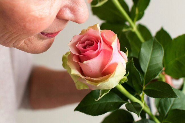 A diminished sense of smell may be linked to several neurological disorders.